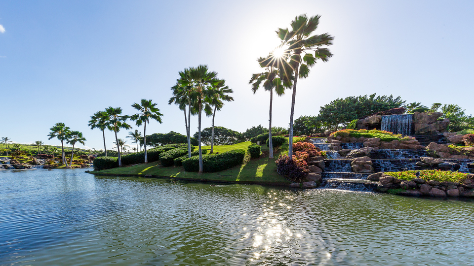 View of palm trees next to a waterfall at Ko Olina Golf Club